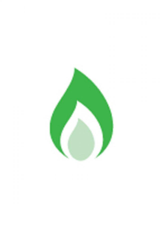 Efficient Gas Services Ltd