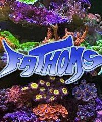 Fathoms Aquatic Reptiles